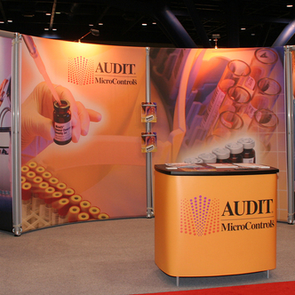 Audit Micro Controls Inline Exhibit