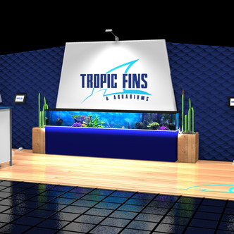 Tropic Fins WindScape Display Design